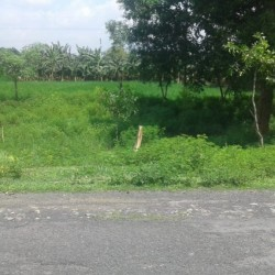 Residential And Commercial Plot On The Main Road Near Chunapur Airport, Purnia