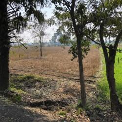 Land For Sale Near Sabaiya Airport
