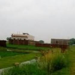 Residential Plot For Lease Near Sakri Darbhanga Highway