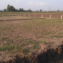 Plot Near Aiims For Sale