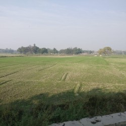 Plot/land For Sale At Khirkiyan, Saran, Bihar In Upcoming Industrial Belt