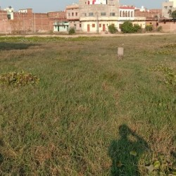 Plot In Kochas, कोचस में जमीन