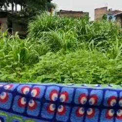 Residential Plot For Sale In Officer Colony Mirchaibadi Katihar.