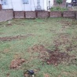 Property Land / Plot Sell Gordhan Shivala Bihta, Main Road, Patna, Bihar 801113