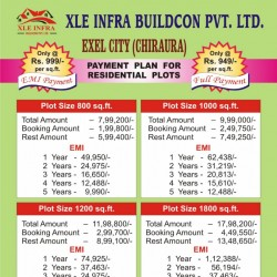 Exel City (chirora) For Sale