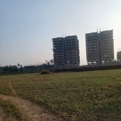 Ashirvad For Sale