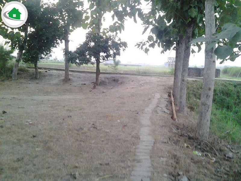 1 5 Bigha in jagdishpur for sale