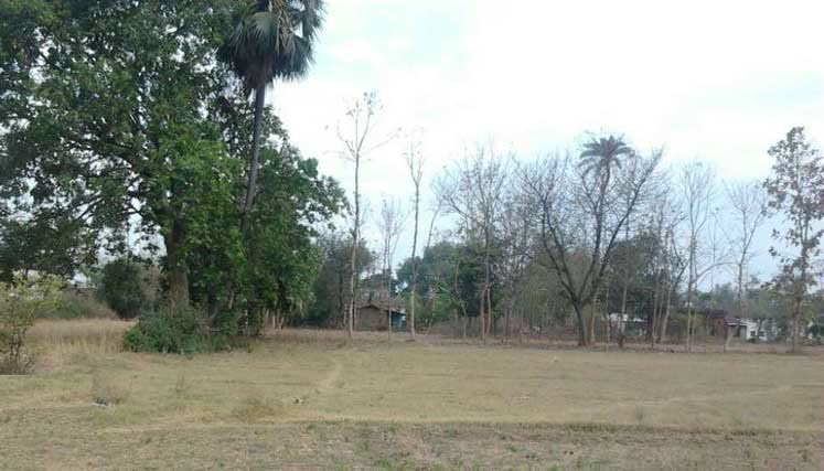 Land for sell in naya mohammadpur