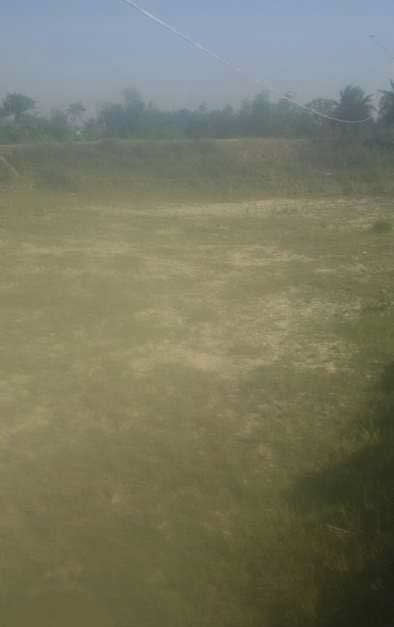 5 Katha land- Residential - commercial for sale in Darbhanga