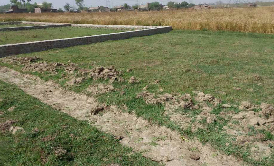 Plot for sale in Jamalpur