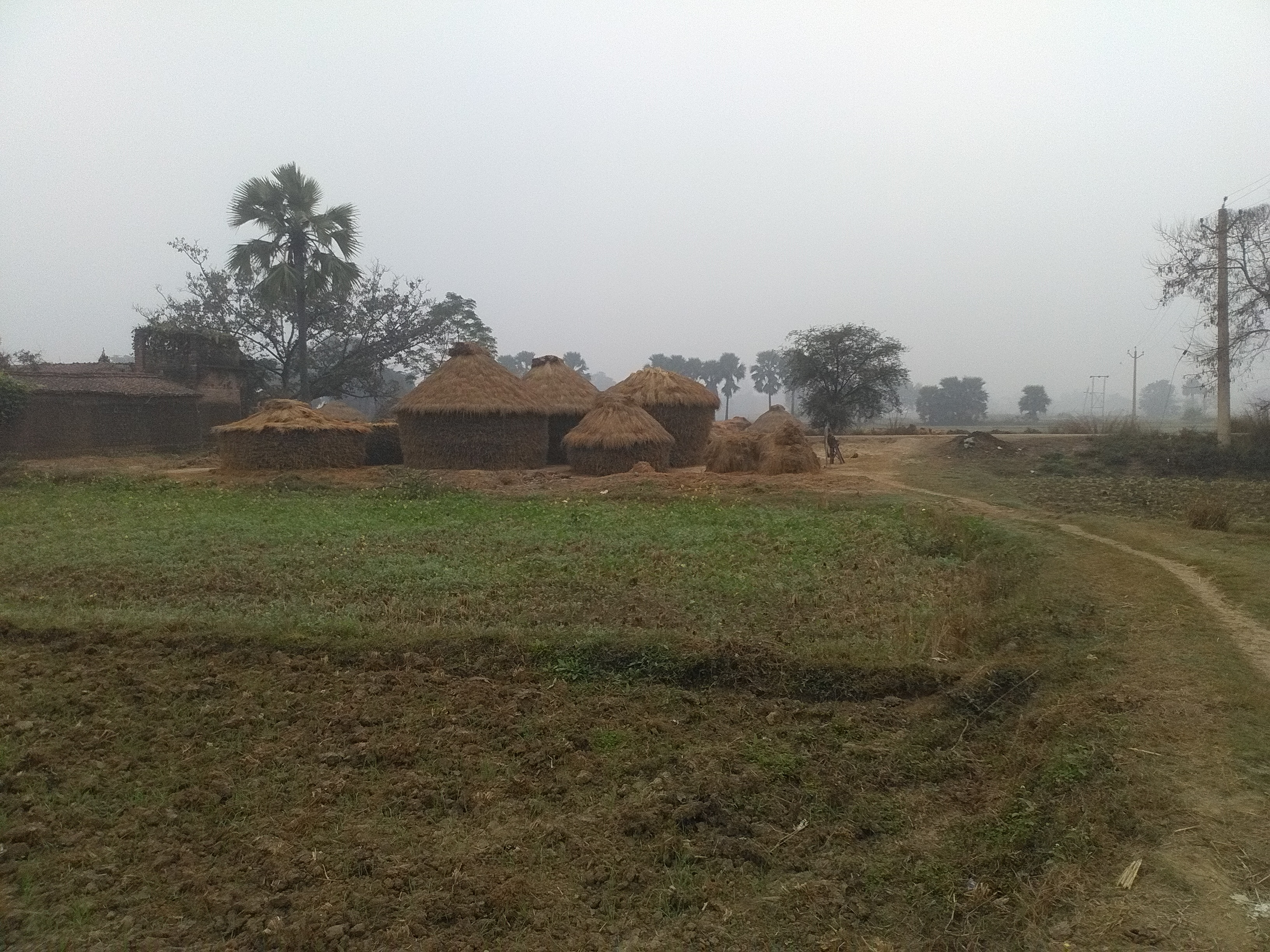 Residential Plot for sale in Jehanabad