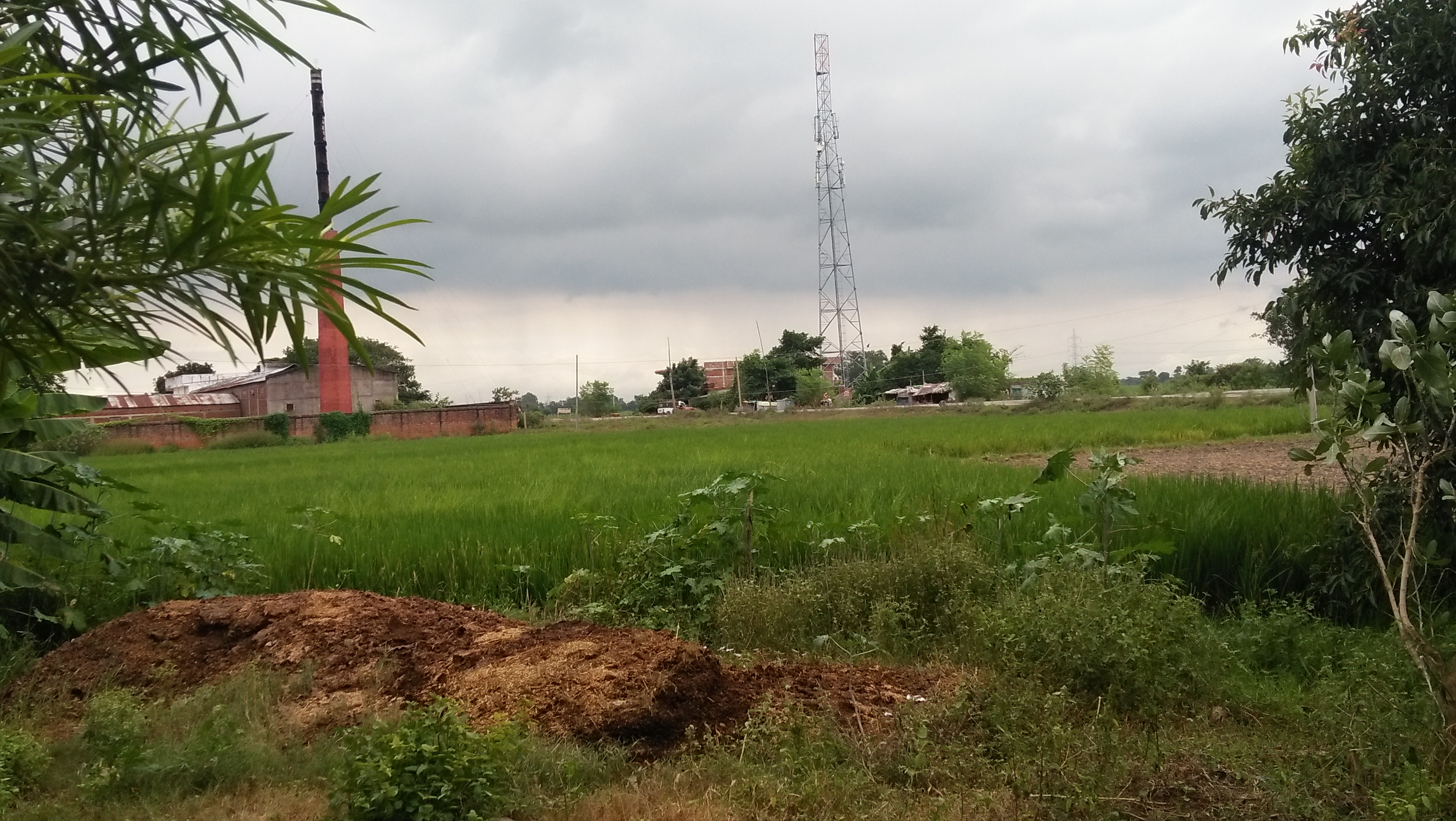 Commercial Land Beside Nh30(arrah-mohania)