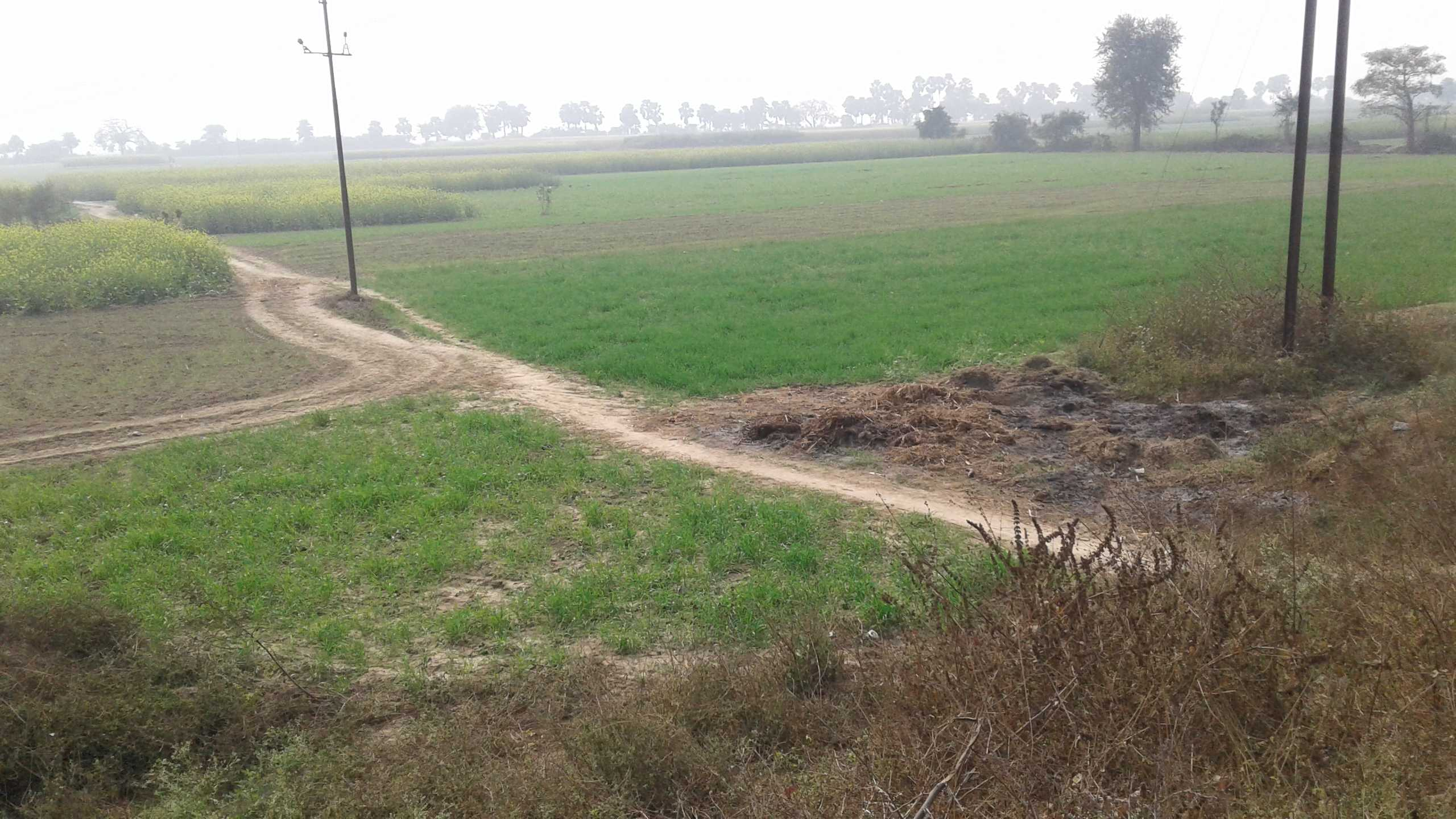 Land for Sale in Patna