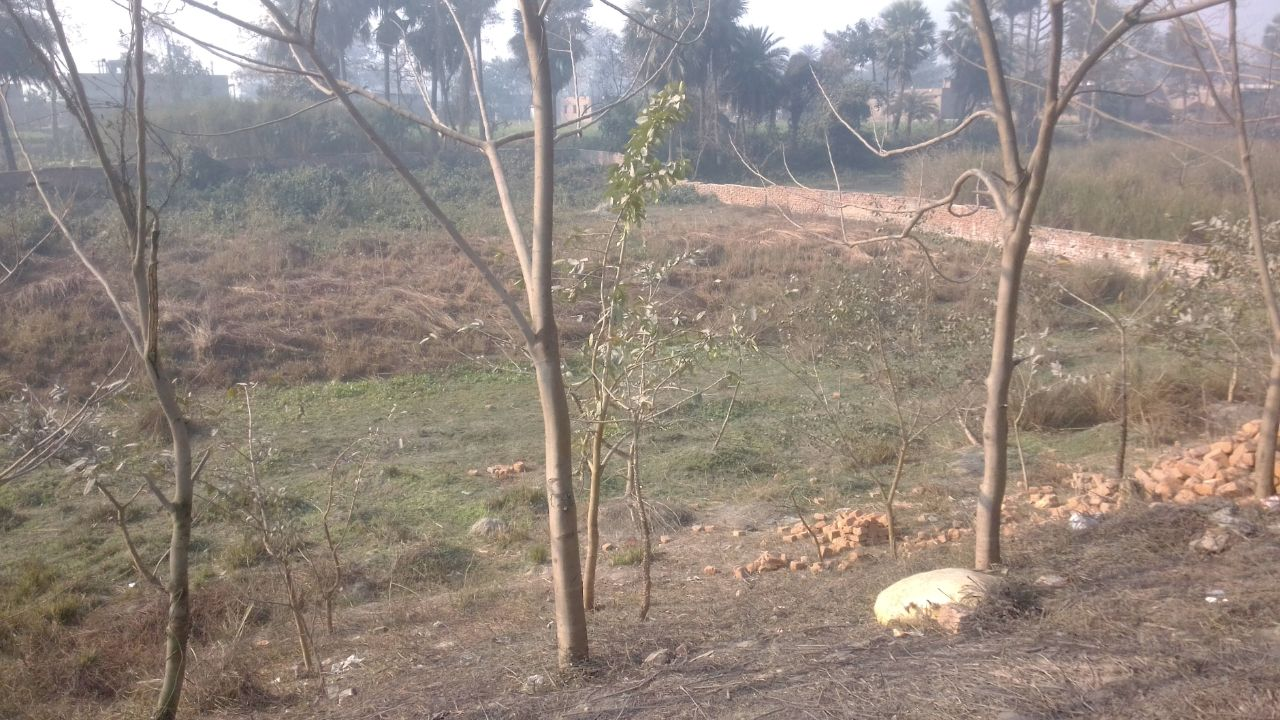 Commercial Plot For Sale On Nh 28 Near Motipur