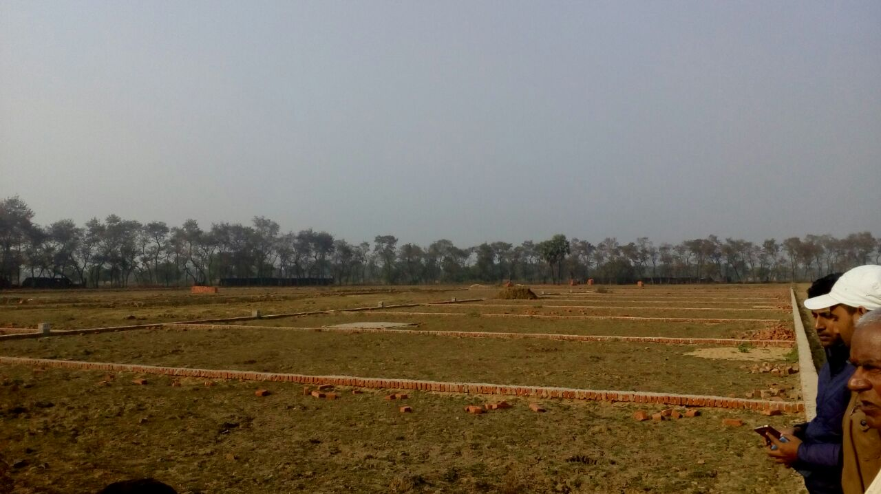 Residential Plot In Rajgir for Sale in Bihar Sharif
