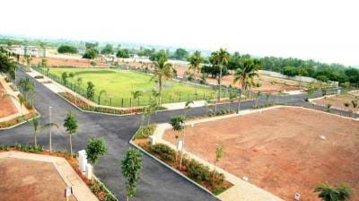 Residential Plot For Sell Near Iit College, Bihta.