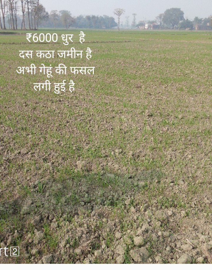 Land For Sale in Gopalganj