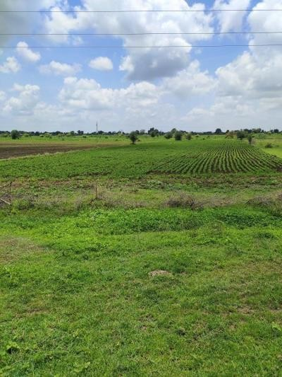 Plot Available Near National Highway 31, Can Be Used For Building A Colony Or Setting Up A Godown Or Any Factory