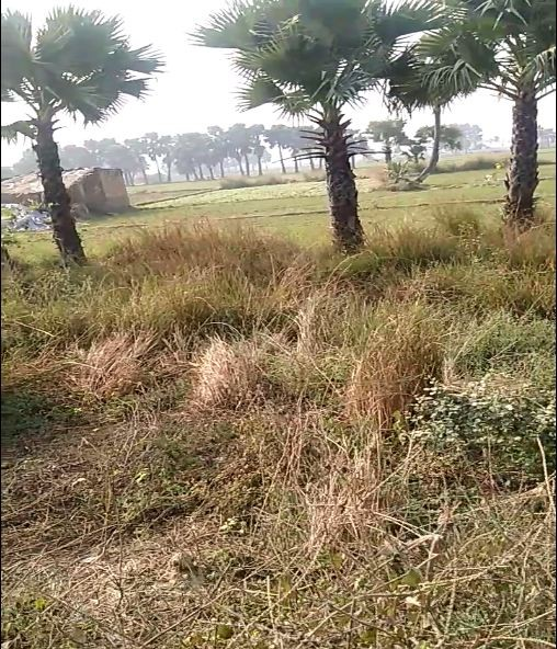 A Plot Of 15 Kathha For Sale In  Nawada Near Kena On On Nh31