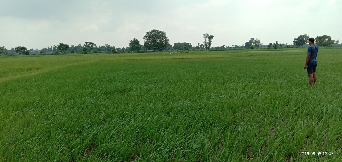 Very Big Plot Available For-industrial Purpose And Residential Township