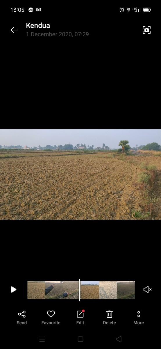 Farming Land For Sale