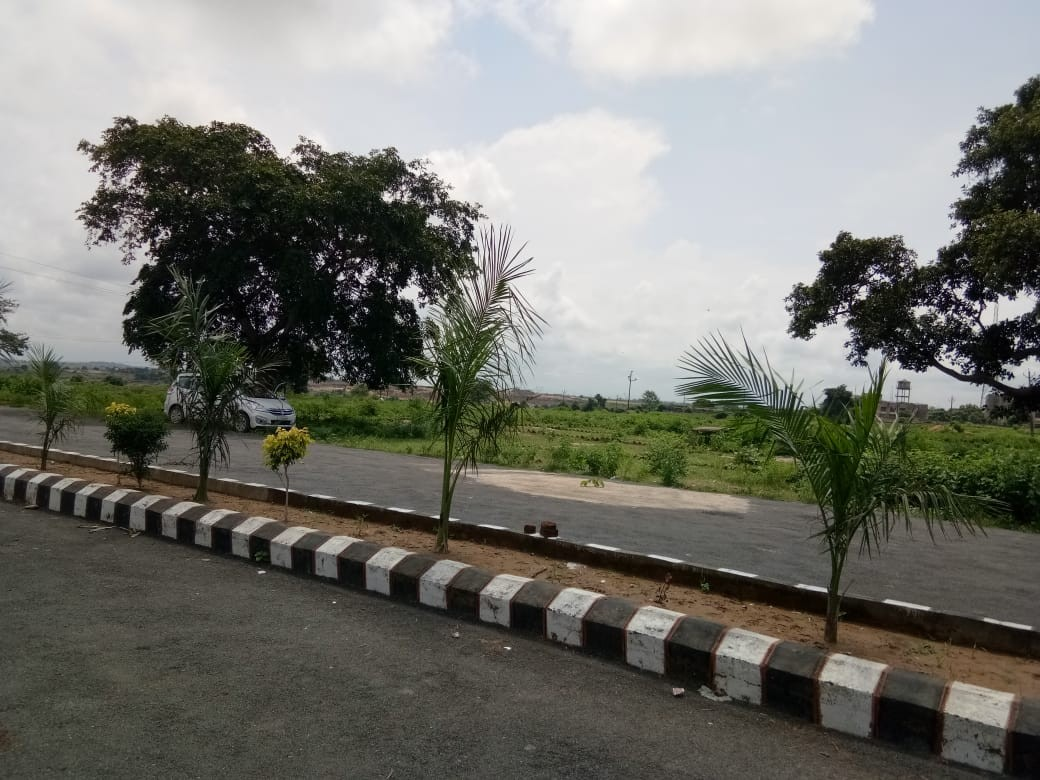 Residential Plot, Sasaram, Near Tarachandi Mandir,