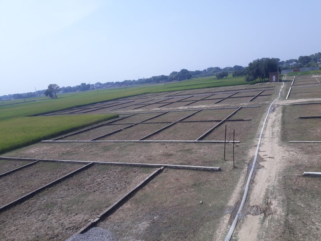 Residential Plot for Sale in Sasaram