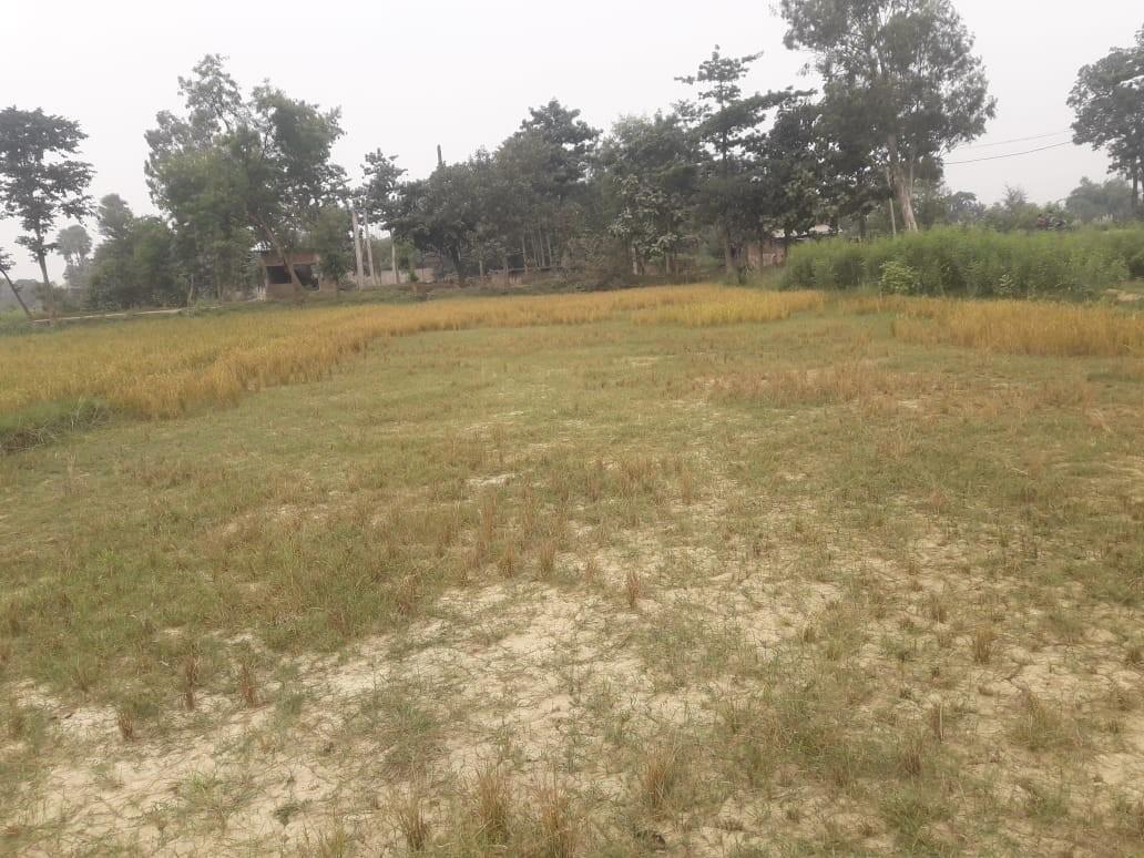Commercial Plot .dhaka Pakridyal Road Ruphara