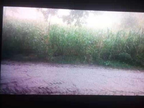 14 Katha Land For Sale in Hajipur
